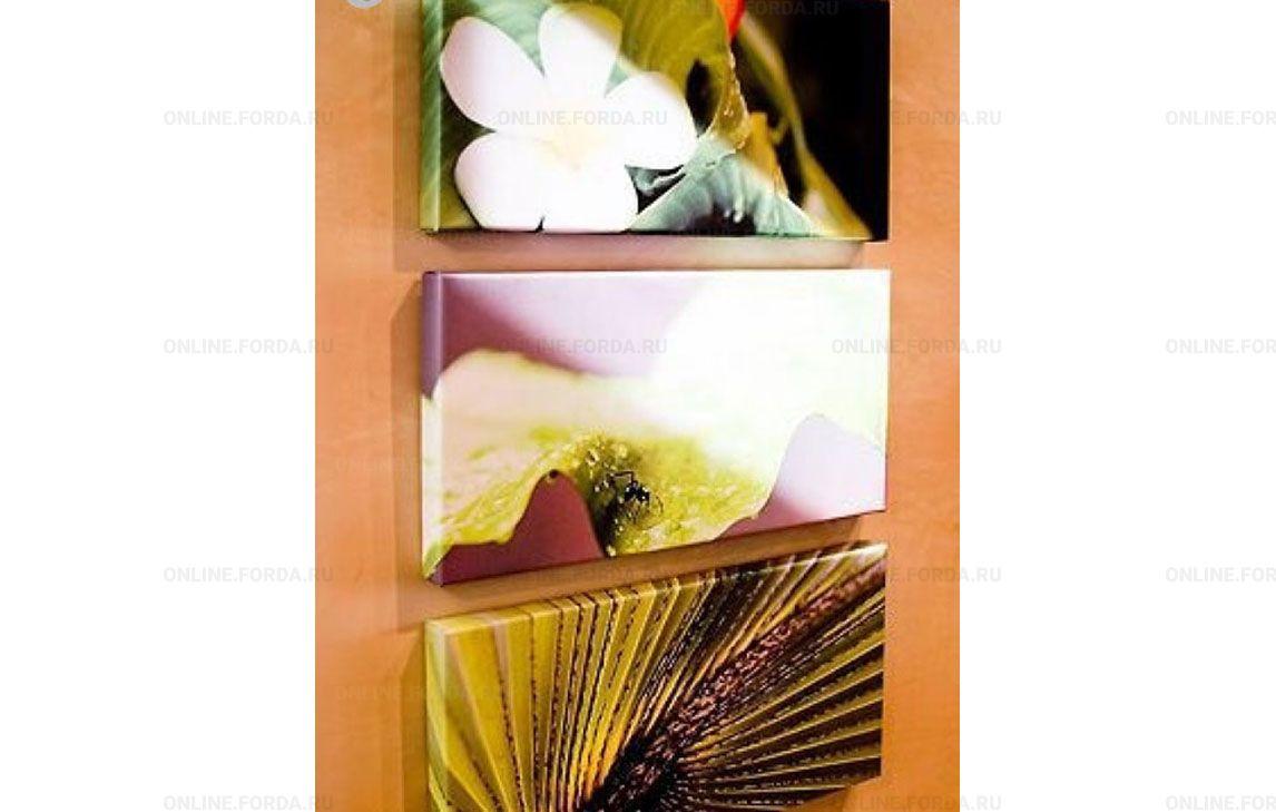 Фотобумага SP-210 High glossy paper